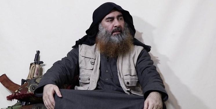 نیوزویک: ابوبکر البغدادی کشته شد