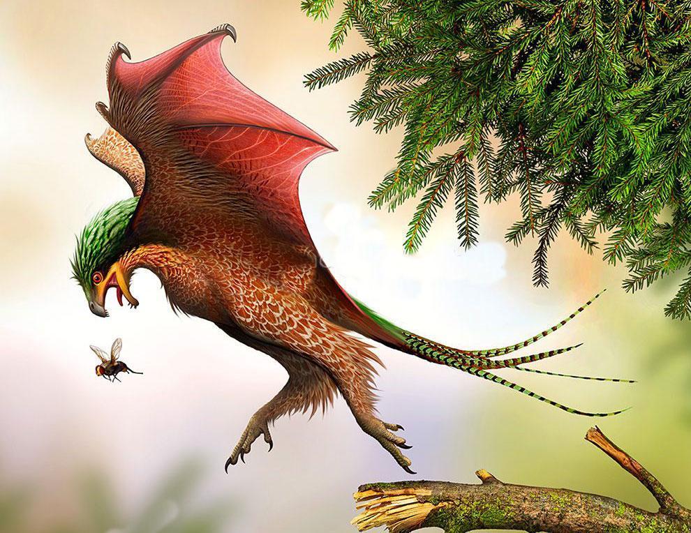 دایناسور های خفاش بال